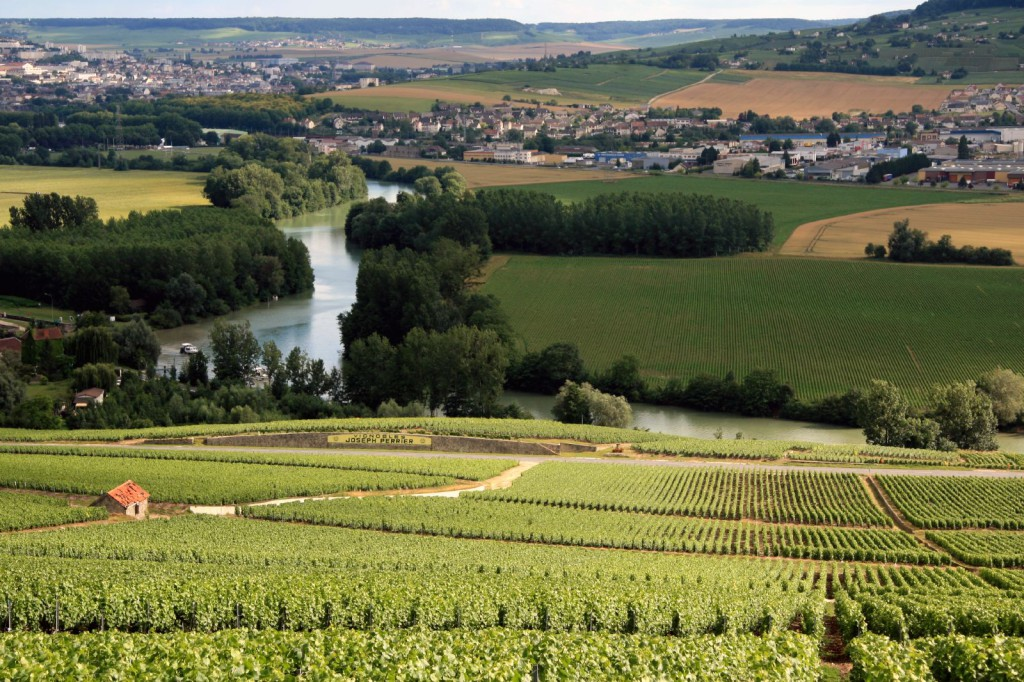 Vignoble en Champagne avec rivière