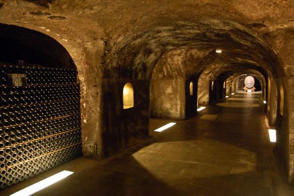 Vue d'une cave à Champagne